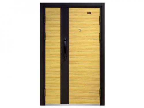 Steel Security Door KD-FDM-50