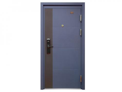 Steel Security Door KD-FDM-53