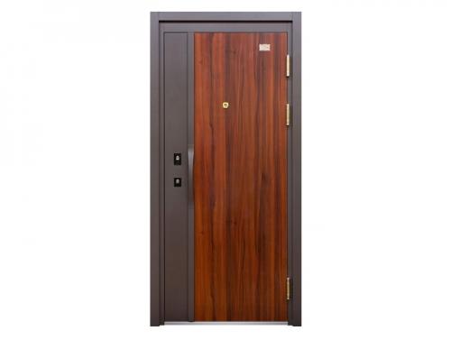 Steel Security Door KD-FDM-57