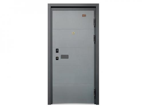 Steel Security Door KD-FDM-60
